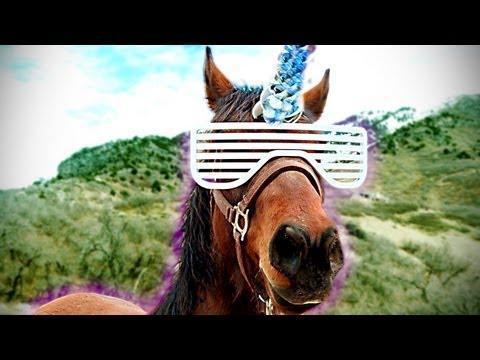 freddiew - Pimp My Horse