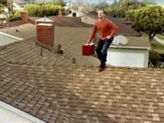 PUB BUD LIGHT - PUB BUD LIGHT GUTTER CLEANER FUNNY