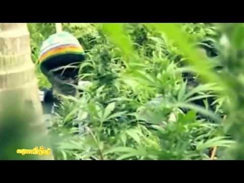 "Official Music 2013 Stephen Marley ft Spragga Benz & Damian Marley ""Bongo Nyah"""