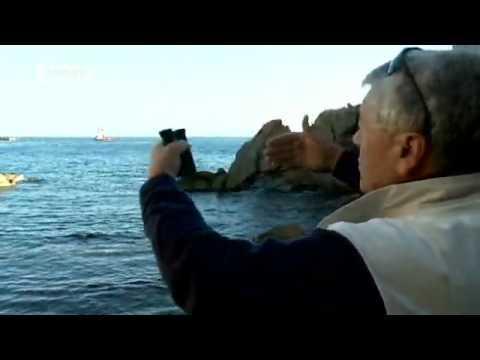 deutschewelleenglish - Italy: End of a cruise | European Journal