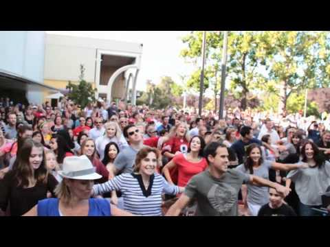Steve Young - [Official] Birthday Flash Mob