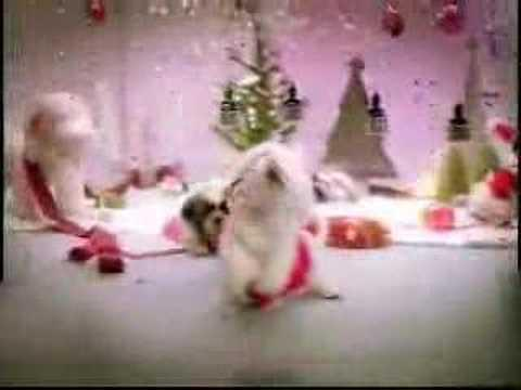 dogs on christmas - dogs singing christmas song