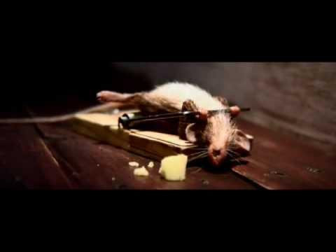 Mouse Trap - Mouse Trap - Cheese Advertisement
