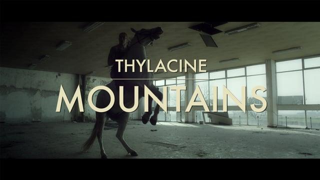 Thylacine - Mountains (Official Video)