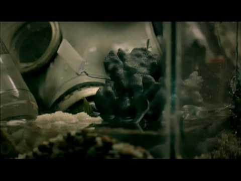 Green Day - Green Day - 21 Guns (Video)